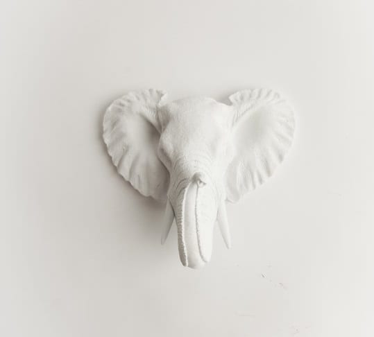 wall hanging elephant head in pure white